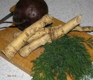 К блюдам из хрена корень