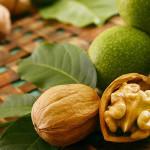 грецкий орех в зел обол